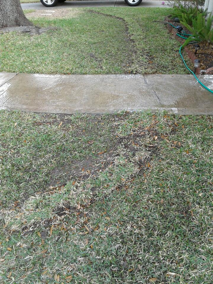 before new tree root barrier installation