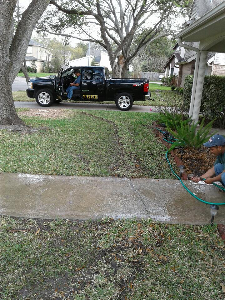 tree root barrier install planning katy