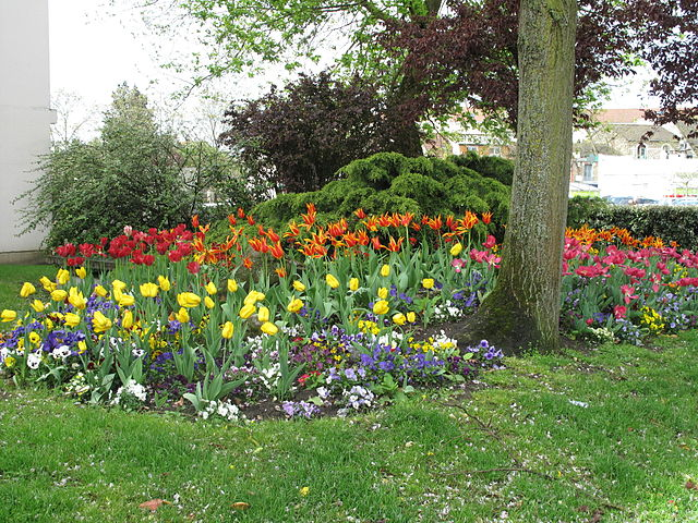 front yard landscaping with flowers