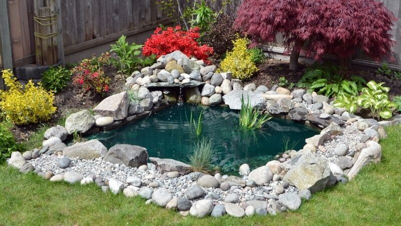 The Latest Modern Landscaping Trends and Features