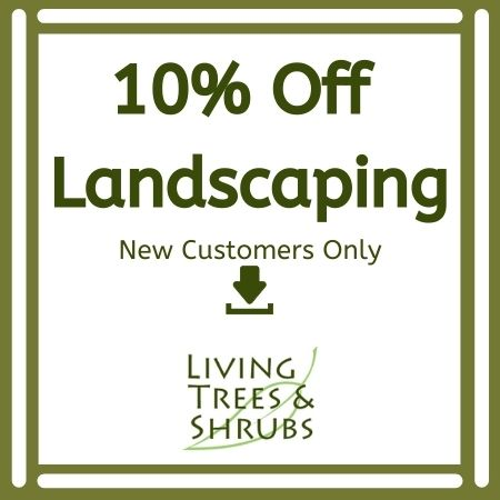landscaping coupons discounts deals special offers