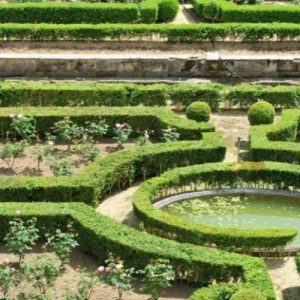formal garden with topiary pruned hedges